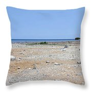 View In Front Of Mission Point Light House 03 Throw Pillow