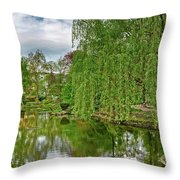 View Of A Botanical Garden, Krakow Throw Pillow