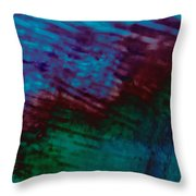 View From In  A Rain Storm Throw Pillow