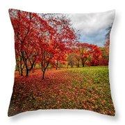 View Of Autumn Throw Pillow