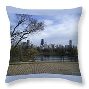 View Of Chicago Throw Pillow