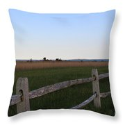View Of Cuttyhunk Throw Pillow