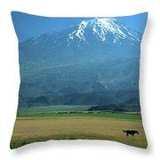 View Of Mount Ararat In Turkey Throw Pillow