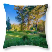 View Of Mt Gardner From Cottonwood Cottage Throw Pillow