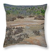 View One From Matekenyane In Kruger National Park-south Africa Throw Pillow