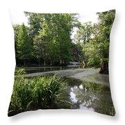 View Over Magnolia Plantation Lake Throw Pillow