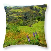 View Over Neverland Throw Pillow