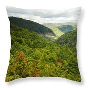 View To The Valley Throw Pillow