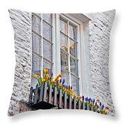 Viewing Antwerp Throw Pillow
