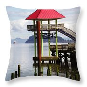 Viewing The Columbia River Throw Pillow by Pamela Patch