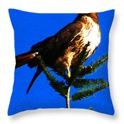 Vigilant Hawk Throw Pillow