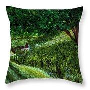 Villa By Jrr Throw Pillow