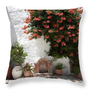 Village Well Throw Pillow