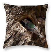 Viloet Winged Swallow-signed-#9682 Throw Pillow