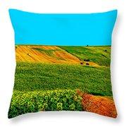 Vincent Van Gogh's Inspiration Throw Pillow