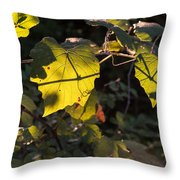 Vine Leaves At Sunset Throw Pillow