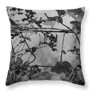 Vine On Fence Throw Pillow