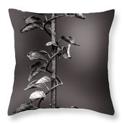 Vine On Iron Throw Pillow