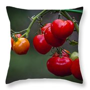 Vine Ripe Goodies  Throw Pillow by Marvin Spates