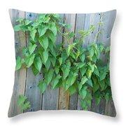 Vine Through The Fence Throw Pillow