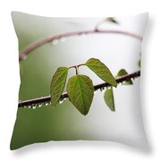 Vine With Raindrops Throw Pillow