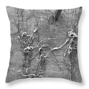 Vines After Snow In Black And White Throw Pillow