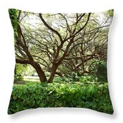 Vines And Oaks Throw Pillow