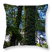 Vines In The Swamp Throw Pillow