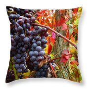 Vines Of October Throw Pillow by Roger Bailey