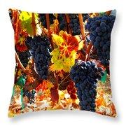 Vineyard 8 Throw Pillow