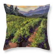 Vineyard At Dentelles Throw Pillow