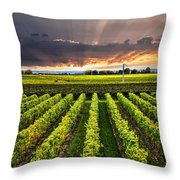 Vineyard At Sunset Throw Pillow