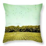 Vineyard Throw Pillow by Colleen Kammerer
