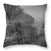 Vineyard Fog Throw Pillow