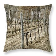 Vineyard In Early Spring Throw Pillow