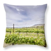 Vineyard Landscape In Maryhill Washington State Throw Pillow