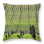 Vineyard Lines 23036 Throw Pillow