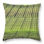 Vineyard Lines 23048 Throw Pillow