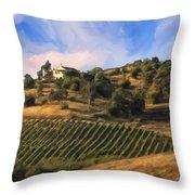 Vineyard Near Avila Beach Throw Pillow