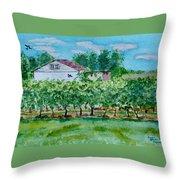 Vineyard Of Ontario 2 Throw Pillow