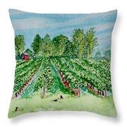 Vineyard Of Ontario Canada 1 Throw Pillow