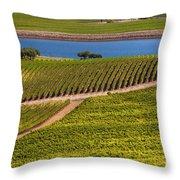 Vineyard On A Lake Throw Pillow