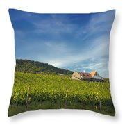 Vineyard On Sunny Hill Throw Pillow