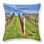 Vineyard Bodega Bay Throw Pillow