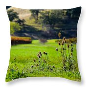 Vineyard Thistles Throw Pillow by CML Brown