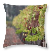 Vineyard View Throw Pillow
