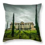 Vineyards And Chateau Throw Pillow