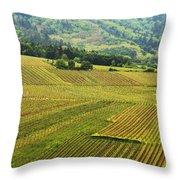 Vineyards Below Zellenberg France 1 Throw Pillow