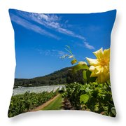 Vineyard's Companion Rose Throw Pillow