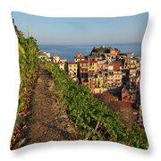 Vineyards Of Manarola Throw Pillow